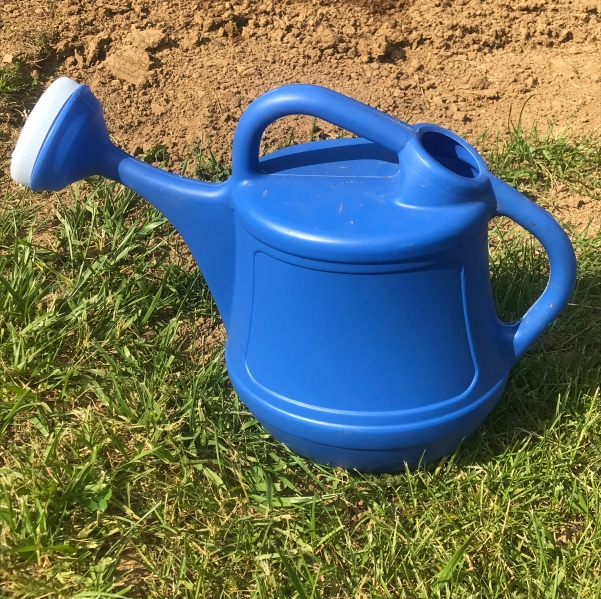Watering can: planting the seeds