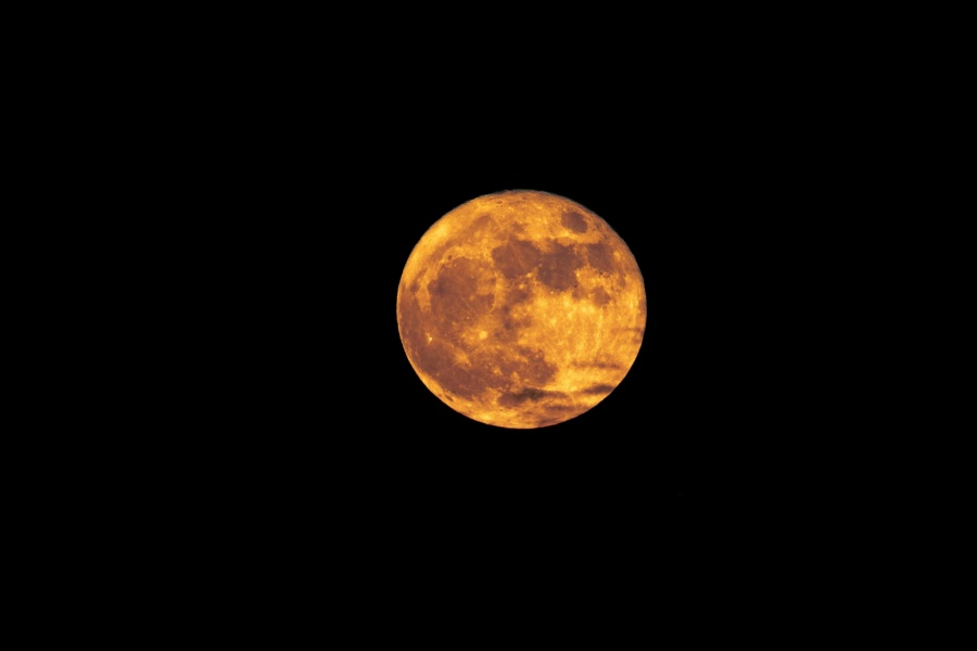 Harvest Moon - juliegoolsby.com