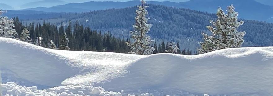 On Mount Shasta - Julie Goolsby